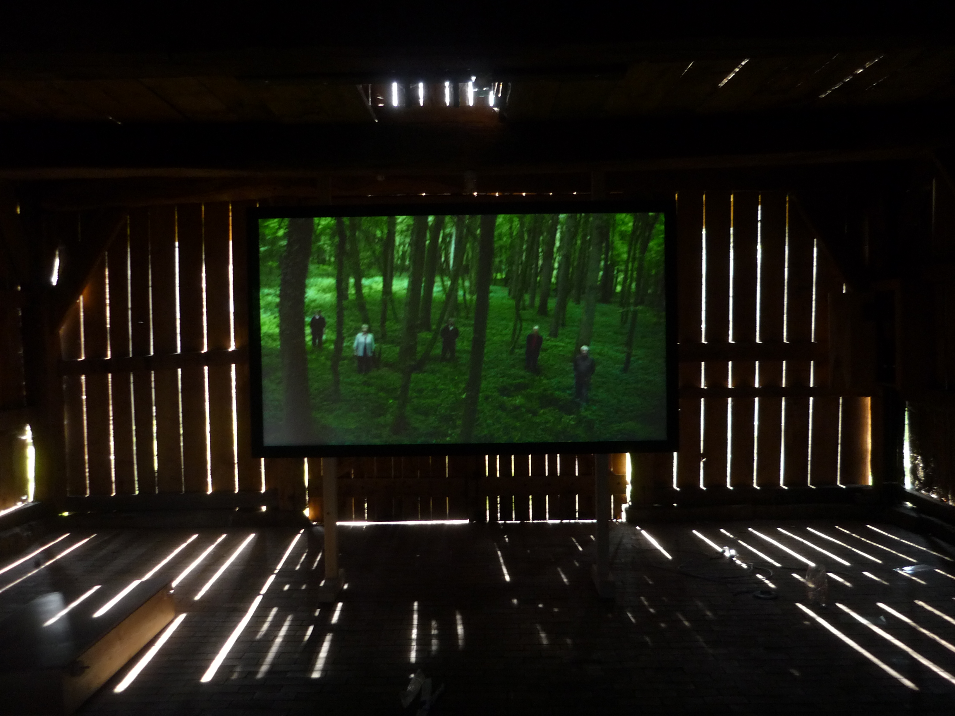 Topography of the Common, Video, Historic shed, permanent Installation