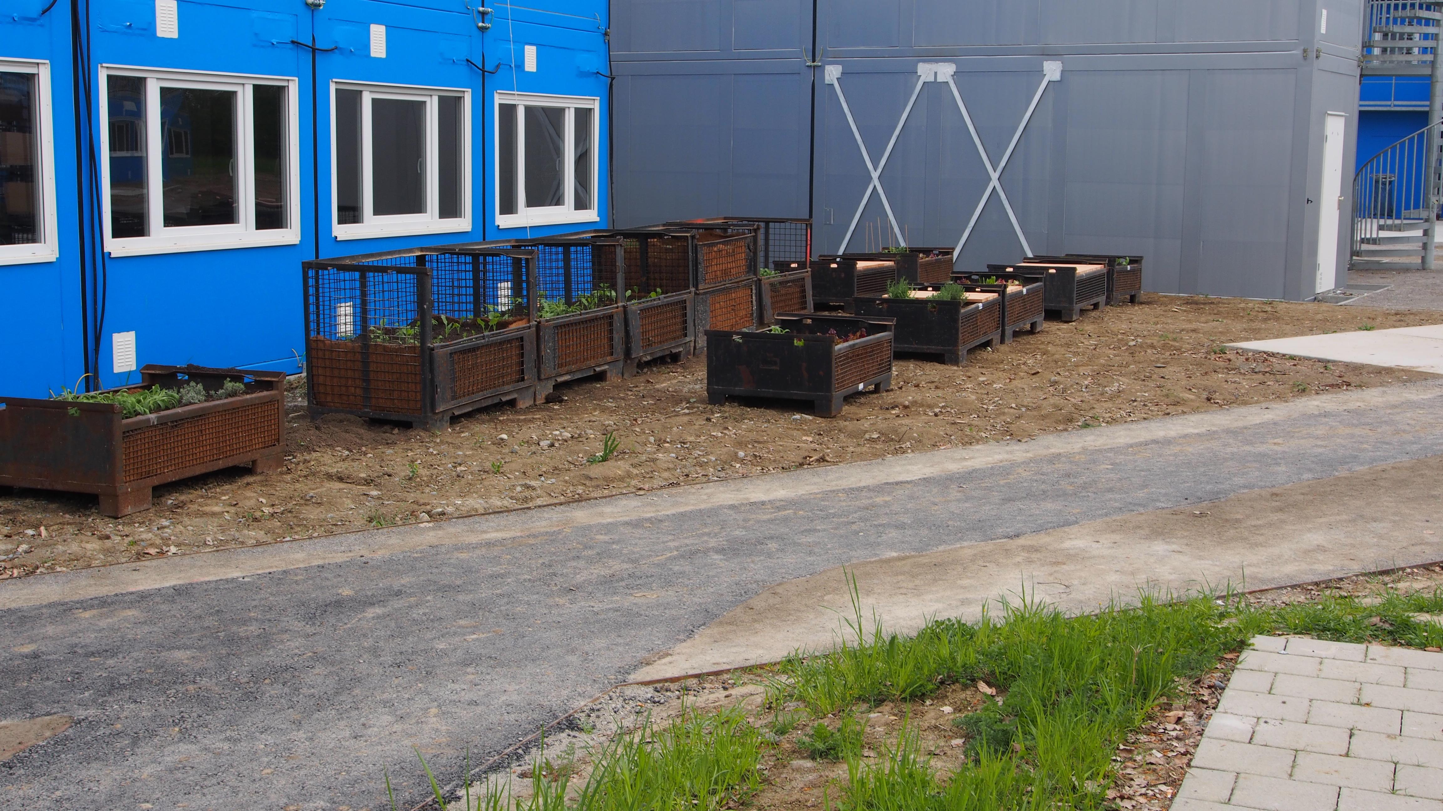 ContainerUni Gardening Hochbeete